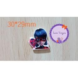 resina Ladybug1 30*29mm